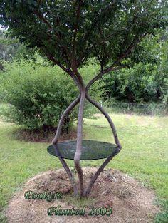 Tankar från Trädgårdsmästarn: Trädgård som dygd