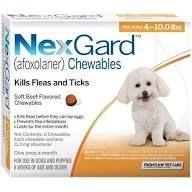 Nexgard 4 10 Lbs 1 Dose By Merial Flea And Tick Fleas Dogs