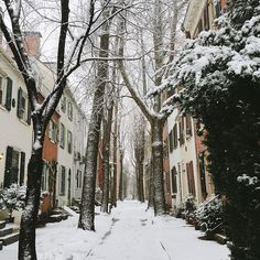 """It's snowing on one of the prettiest streets in #Philadelphia."" (Photo by @artintheage on Instagram)"