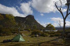 Mark's Tasmanian Bush Blog: Walks