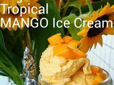 バイタミックスでVeganマンゴーアイスの画像