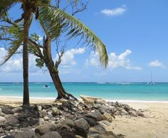 17 more days,,,,,,,,riu jamaci | Riu at Ocho Rios Jamaica | Favorite Places & Spaces
