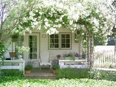 Rose covered cottage!