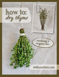 How to Dry Thyme   84th & 3rd
