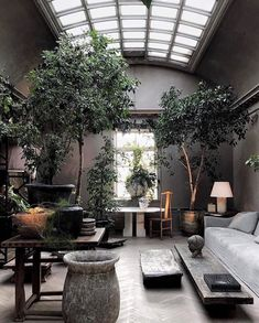 37 Inspiring Tree Interior Design Ideas - We humans evolved surrounded by plants, no wonder we find them so easy on the eye. No home or office interior is complete without at least a few plant. Tree Interior, Patio Interior, Interior Exterior, Home Interior Design, Interior Styling, Exterior Design, Interior Architecture, Indoor Trees, Indoor Plants