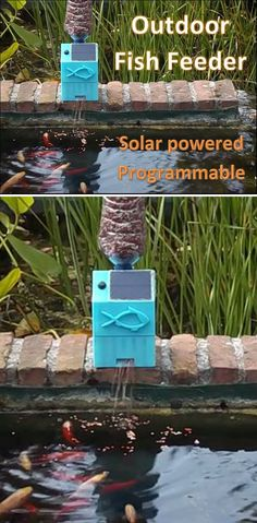 Everyone with pet fish, either in a pond or an aquarium, has had the issue of not being able to feed them when on holiday. To solve this, I decided to make an automatic fish feeder. Since my fish are in a pond outside, I wanted to make this project solar powered.