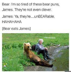 I'm so tired of these bear puns #Funny #Memespic.twitter.com/9YkitamcfG http://ibeebz.com
