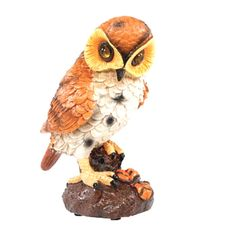 Motion Activated Hooting Owl Decor - Shining Eyes Light Up & Hoots Yellow Eyes, Bright Yellow, Rodents, Plate Sets, Life Is Beautiful, Light Up, Owl, Birds, Hand Painted