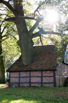 Bakspieker in Brecklenkamp - Lattrop Overijssel - Twente (NL)
