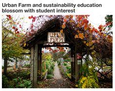 UO Urban Farm success.