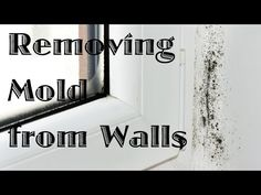 Bathrooms and other humid areas can begin to grow mold on the walls and ceilings. This is a guide about removing mold from painted walls and ceiling.