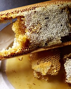 honey honey. food for the bees. westwind orchard.
