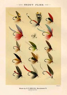 trout flies glorious fly fishing print no 2 by EPHEMERApress, $12.50