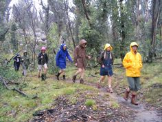 Google Image Result for http://upload.wikimedia.org/wikipedia/commons/9/9d/Bushwalking_in_the_rain_at_Kosciuszko_National_Park.jpg