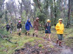 Google Image Result for http://upload.wikimedia.org/wikipedia/commons/9/9d/Bushwalking_in_the_rain_at_Kosciuszko_National_Park.jpg