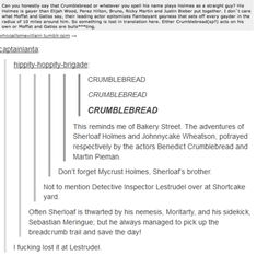 The Sherlock fandom is insane!