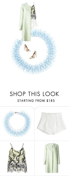 pale perfect Mary kat and coat shorts top and heels by kohlanndesigns on Polyvore featuring Mary Katrantzou