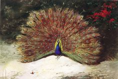Peacock Premium Giclee Print by Archibald Thorburn at Art.co.uk