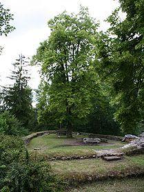 Burghof nach Westen