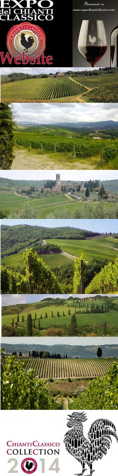_______________________ -ITALIA-TOSCANA: il vino Chianti Classico  by Francesco  -Welcome and enjoy-  #WonderfulExpo2015  #Wonderfooditaly #MadeinItaly #slowfood  #Basilicata #Toscana #Marche #Calabria #Sicilia #FrancescoBruno    @frbrun   frbrun@tiscali.it