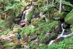 Waldviertel Top-16-Sehenswürdigkeiten: diese Orte musst du gesehen haben Travel Around, Outdoor, Vacation Travel, Long Weekend, Photo Mural, Hiking Trails, Outdoors, Outdoor Games, The Great Outdoors