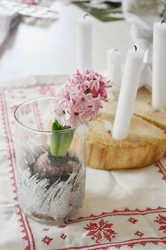 pink hyacint