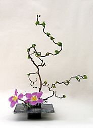 ikebana.  Japanese floral arrangement.