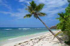 """Beach """"Anse Kerlan & Petit Anse Kerlan"""""""
