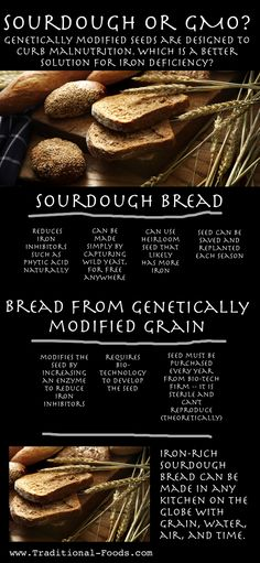 Sourdough Versus GMO @ Traditional-Foods.com