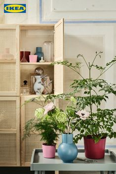 In unseren neuen LÄTTSÅLD und OMFANG Vasen machen sich frische Sommerboten besonders gut. 🌸🌺🌼 Ikea Inspiration, Tiny House Living, Cozy House, Ikea Sortiment, Ikea Portugal, Bamboo Weaving, Decoration Plante, Ikea Family, Living Room Trends