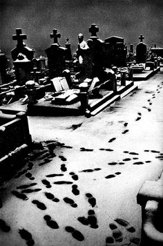 ghost footprints.ok...ok...visitors footprints,but I like the first thought better.