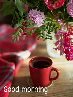 5 Fantastic Ideas Can Change Your Life: Classic Coffee Packaging coffee plant harvest.But First Coffee Dark kawa coffee time. Coffee Girl, I Love Coffee, My Coffee, Coffee Shop, Coffee Cups, Tea Cups, Coffee Plant, Coffee Scrub, Coffee Signs