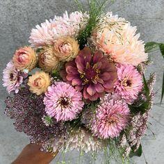 """27 gilla-markeringar, 2 kommentarer - Elin Hadvall (@tradgardselin) på Instagram: """"Så många favoriter i en och samma bukett. Aster 'King Size Apricot', blomstermorot 'Dara', zinnia…"""" Zinnias, Floral Wreath, Wreaths, Flowers, Bouquet, Instagram, Decor, Floral Crown, Decoration"""