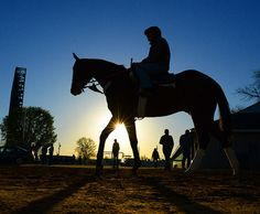 Mornings on the Backside at Churchill Downs for the Kentucky Derby.