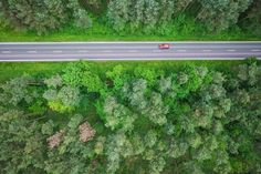 Aerial and Symmetric View of a Road in the Woods Free Image Download
