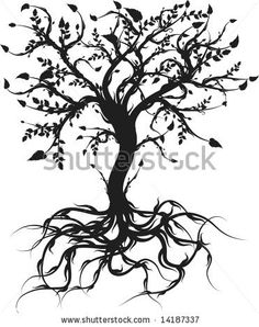 Conceptual illustration of the tree of life. by Renee Reeder