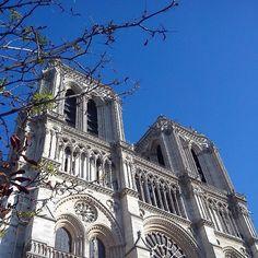 Cathédrale Notre Dame de Paris!