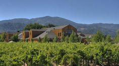 Cakebread Cellars, Innovative Wine Tourism Experiences, San Francisco | Napa Valley 2012, Best Of Wine Tourism