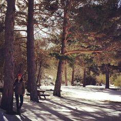 On instagram by melaort96 #landscape #contratahotel (o) http://ift.tt/1RhuVSh #domingo #nieve #february #excursion #mañaneo #pineda #Burgos #mojada #sun #paisajes #snow #instaday #instapaisaje #instaphoto #felichidad #risas