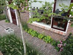 Ideas Garden Modern Entrance Pathways For 2019 Garden Deco, Love Garden, Dream Garden, Garden Modern, Garden Paving, Garden Paths, Outdoor Plants, Outdoor Gardens, Amazing Gardens