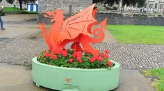Cardiff castle, red dragon