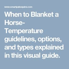When to Blanket a Horse- Temperature guidelines, options, and types explained in this visual guide.