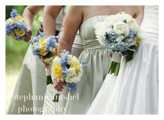 Wedding bouquets in blues, whites, and yellows. The bride carries a beautiful bouquet of blue hydrangea and fragrant white peonies... while her attendants carry white hydrangeas, yellow roses, and blue delphinium. By Backyard Garden Florist.