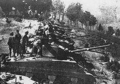 Il Monte Battaglia fu particolarmente e accesamente conteso, finché cadde in mano al nemico quando una forte formazione di partigiani attaccò alle spalle le nostre posizioni facilitando così l'avanzata degli americani  // #Liberazione // CDGL Casola Valsenio: Monte Battaglia