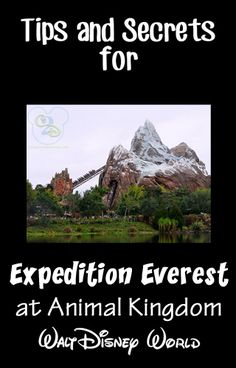 Tips and Secrets for Expedition Everest. Pin now and reference on your next trip.