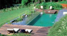 La différence entre une piscine conventionnelle et une piscine écologique réside essentiellement dans le fait que l'entretien ne nécessite pas desubstances chimiques
