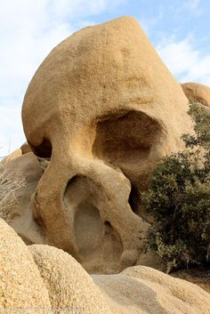 This road trip through Joshua Tree National Park will show you how to see all of the highlights in one day. The driving itinerary begins at the north entrance and stops at all o the must see attractions in the park finishing up at the south entrance. Most Visited National Parks, National Parks Usa, Chobe National Park, Joshua Tree National Park, Palm Springs California, California Dreamin', Bryce Canyon, Grand Canyon, Road Trip Hacks