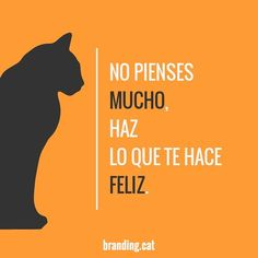 #reflexionsbranding #frases #quote #colors #orange #taronja #old #new #branding #cat #web #illustrator #marketing #disseny #diseño #diseñográfico #design #graphic #graphicdesign #exploretocreate #publicidad #sabadell #Barcelona