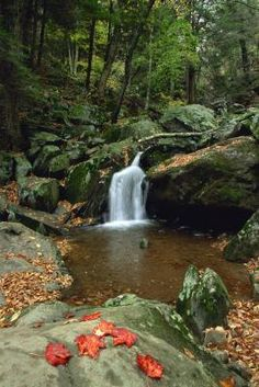 Attractions in Shenandoah Valley, Virginia | USA Today