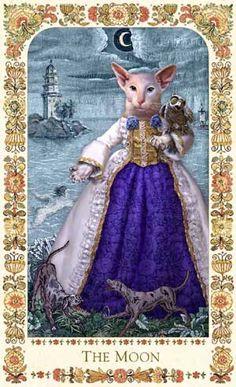 Baroque Bohemian Cats' Tarot - Creators: Alex Ukolov and Karen Mahony; costumes by Anna Hakkarainen - Published in 2004 by The Magic Realist Press